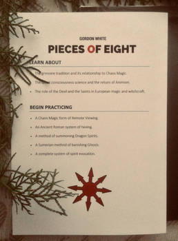 Pieces of Eight: C.M.E.A.E. (Custom Bound Book)