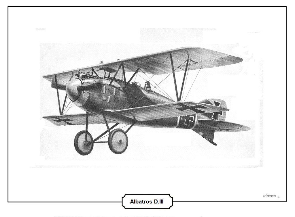 Albatros D.III by Hun100D