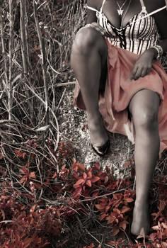 Dusk + Summer Photoshoot I
