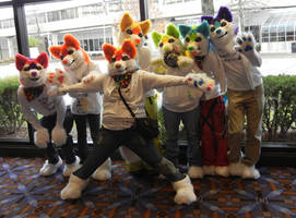 Rainbow huskies by DrakonicKnight