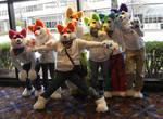 Rainbow huskies
