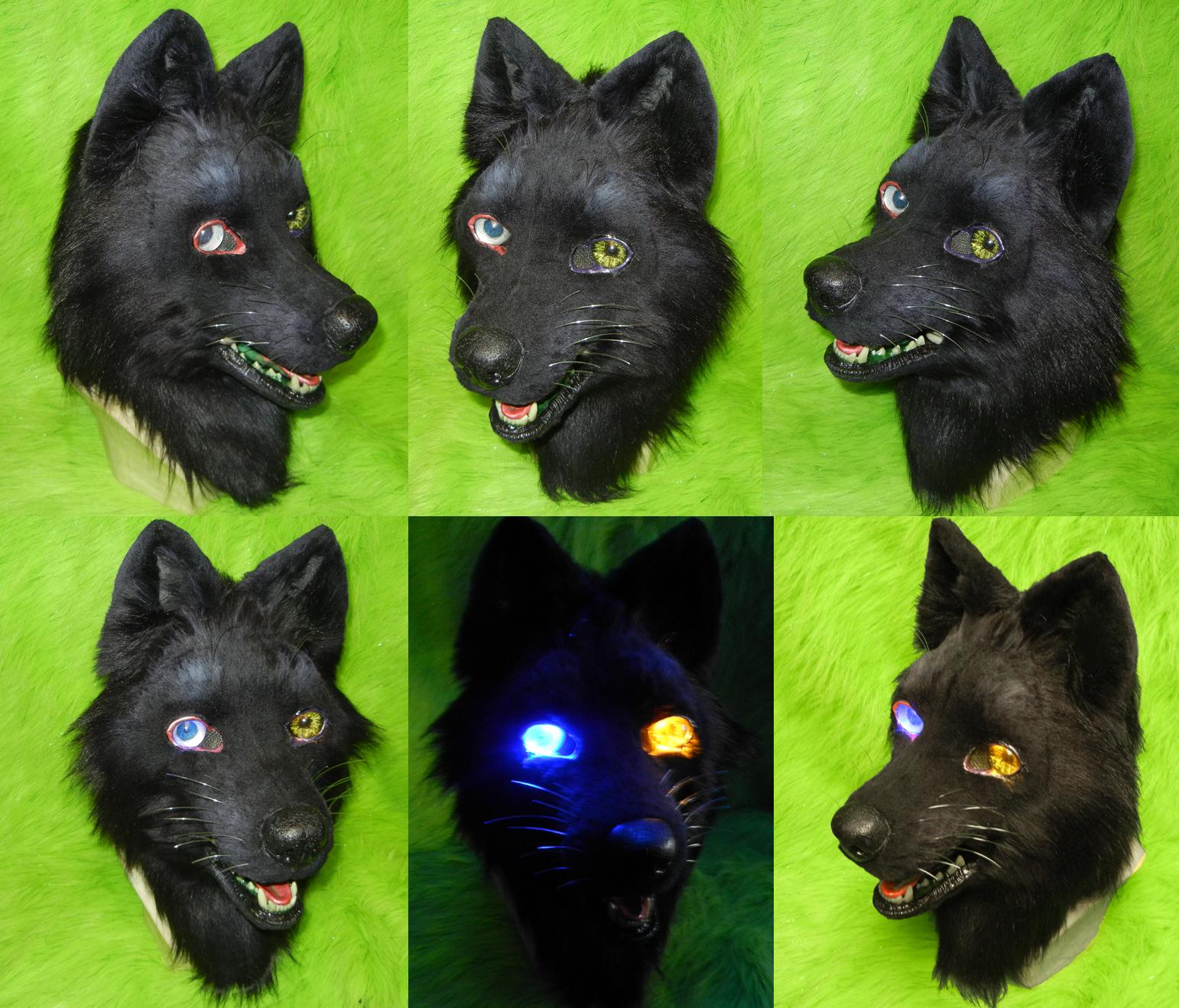Wolfs Rain - Darcia Head by DrakonicKnight