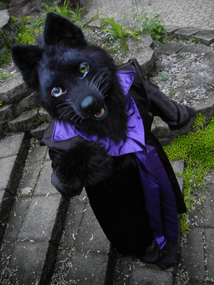 Wolfs Rain - Darcia by DrakonicKnight