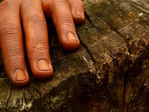 6:Patience - Hands Series