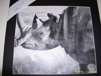 Girl Petting Rhino