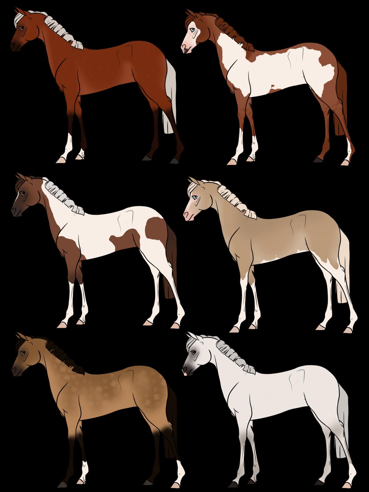 Horse Adopts Set 3 [0/6 Closed]