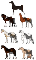 Stallion, Mare and Foal Adopts [6/7 OPEN]