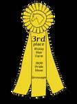 RSFPS2020   Dressage   3rd [Prize]