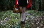 The tale of Red Riding Hood II