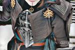 Inquisitor Lavellan Details