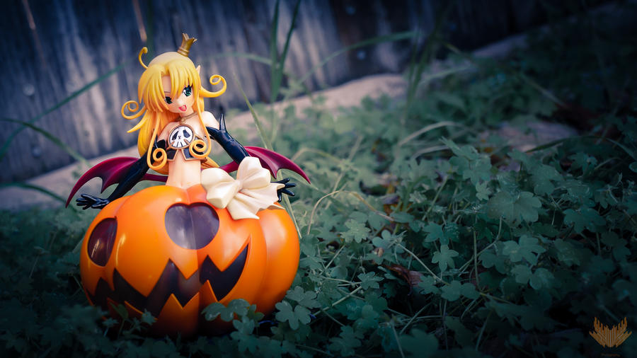 Colorful Pumpkin by Noble-beast-photo