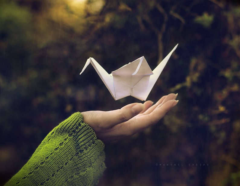 Dreams made of paper by Cochalita