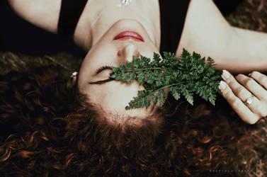 Fern symphony by Cochalita