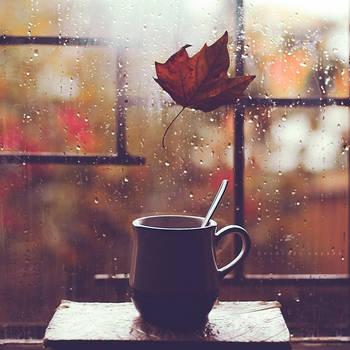 Fall mood by Cochalita