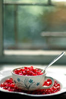 a cup of pomegranate by Cochalita