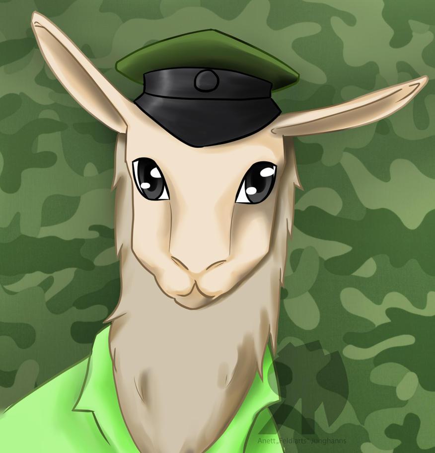 Comission: General Pajama Llama by Feldiarts