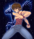 Pegasus... Ryu Sei Ken!!