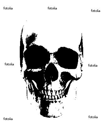 Graffiti Stencils Skull graffiti stencils skull skull