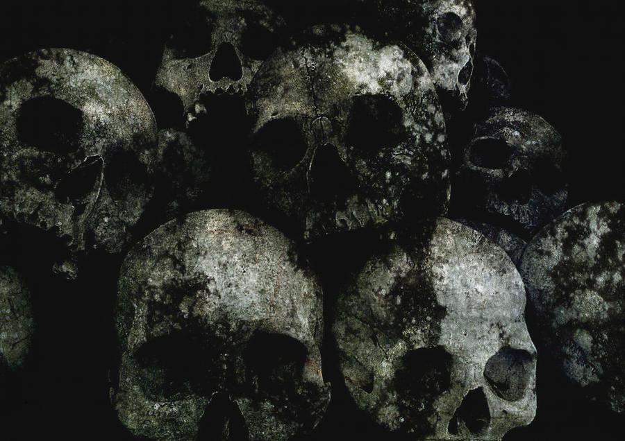 Skulls by crazy13