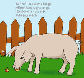 Pig - Children's Book by DezWagner