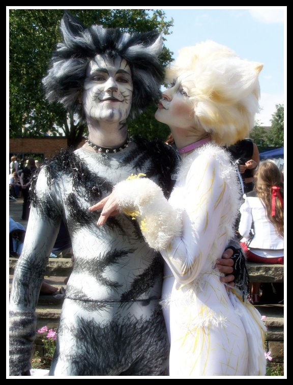 Cats costumes 1 by Rollwurst