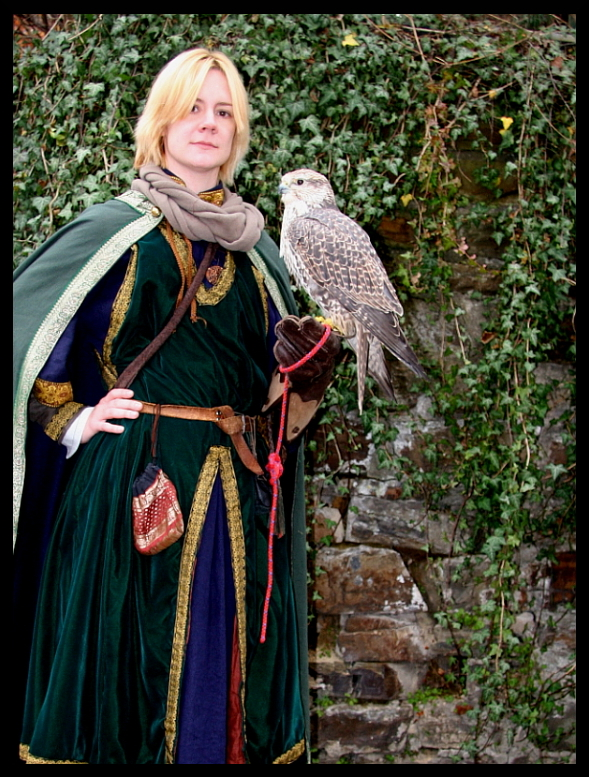 Medieval lord with falcon by Rollwurst