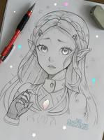 Zelda - Breath of Wild