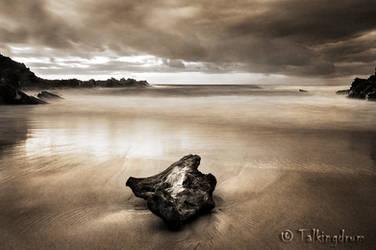 Driftwood by Talkingdrum