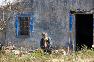 Man And Dog by Talkingdrum