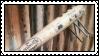 nail bat 2 by bunsona