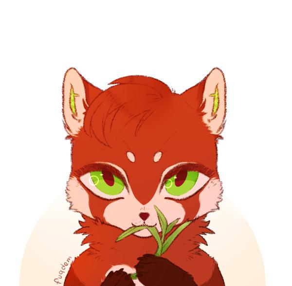 cutie red panda by fuqdem