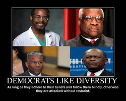 Democrats like diversity by IND-conservative