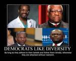 Democrats like diversity
