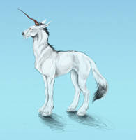 Cold-Climate Unicorn by j-maddox