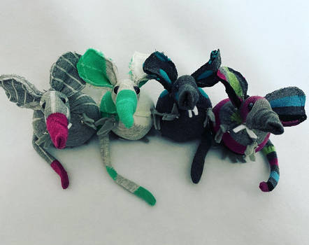 Four Sock Rats