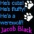 He's Jacob Black by Lolita320 by Twilight-fan-club