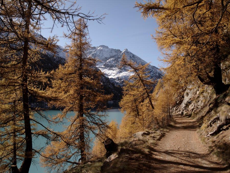 Enchanted footpath by bellaricca