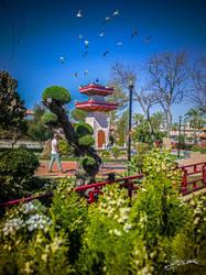 Jardin Oriental II by JuanChaves