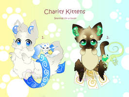 B-P: Charity Kittens Auction CLOSED