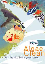 Algae Clean by Katie-Grace