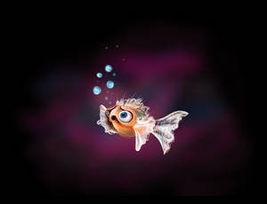 Matt, the confused fishy