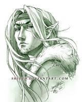 Commission: Sywyn by shideh