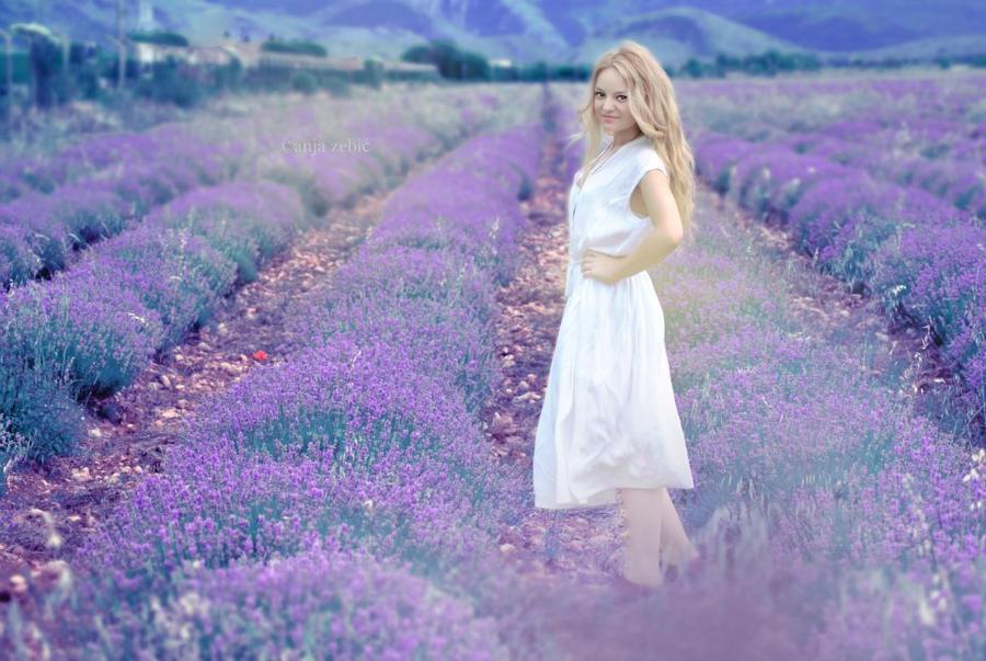 Purple by LeeLooAnja