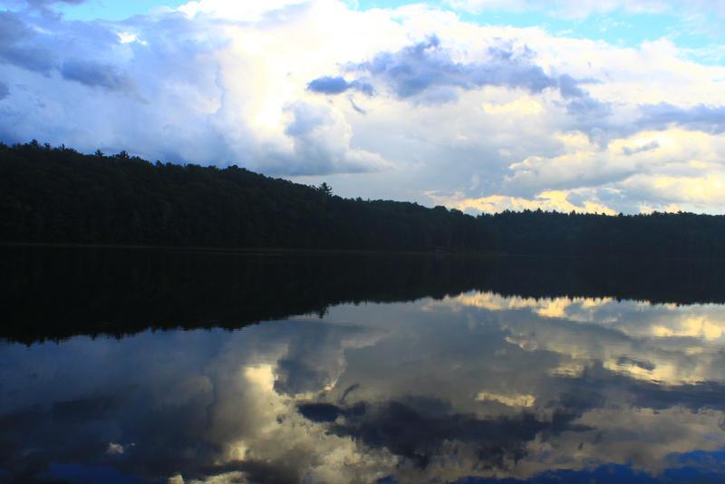 Reflection1 by malaladanila