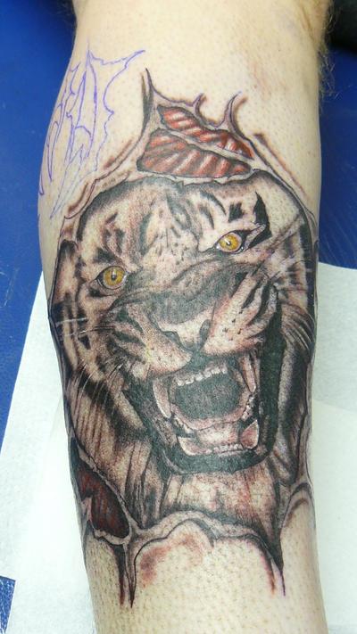 Tattoes on Tiger Tattoos