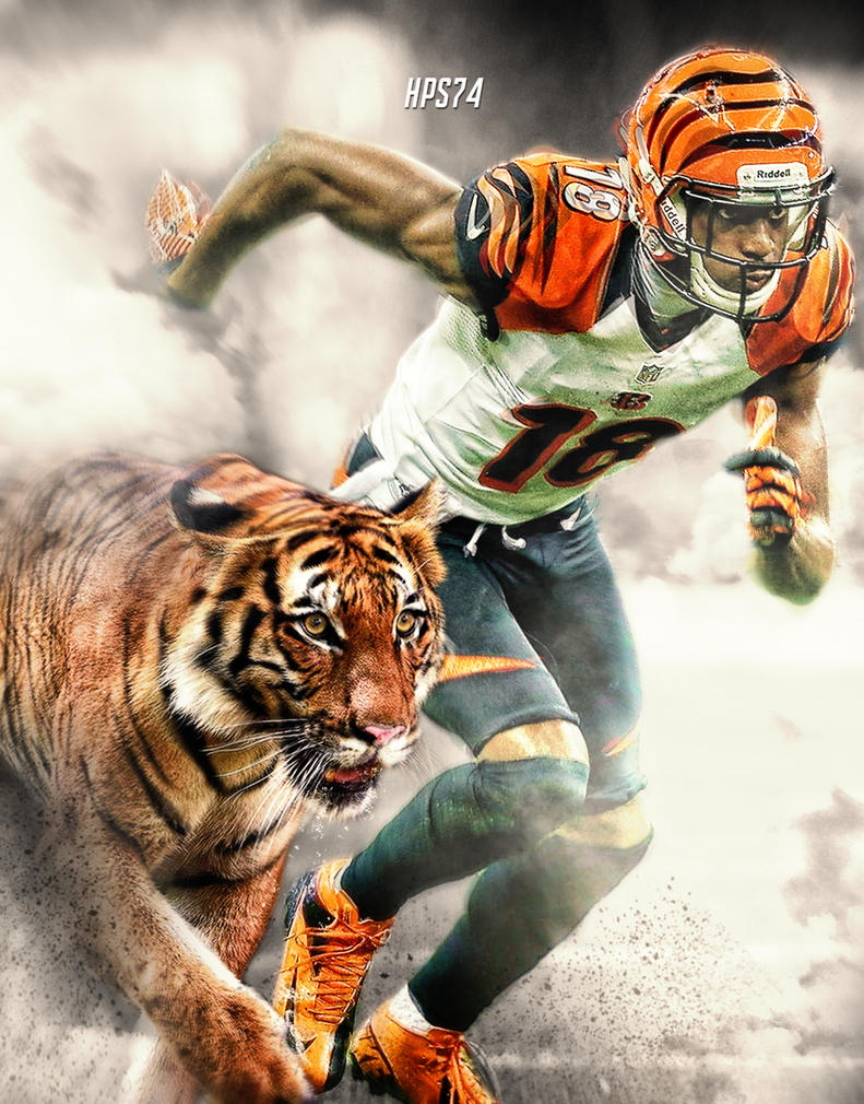 AJ Green Wallpaper By HPS74