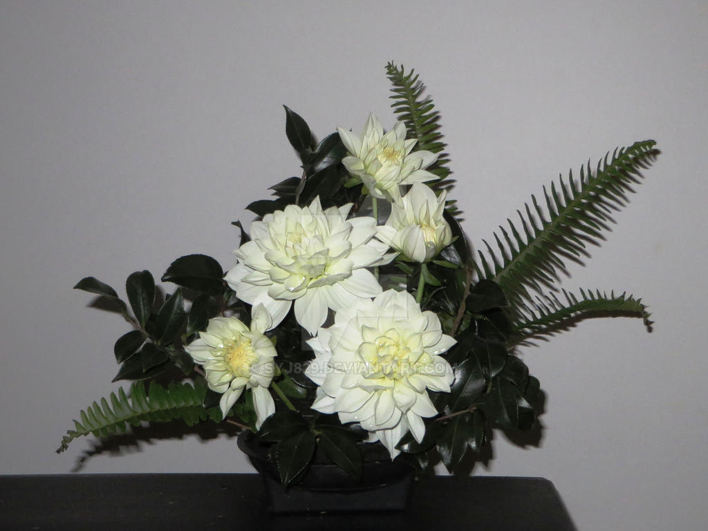 Simple dahlia flower arrangement by syj829 on deviantart simple dahlia flower arrangement by syj829 izmirmasajfo
