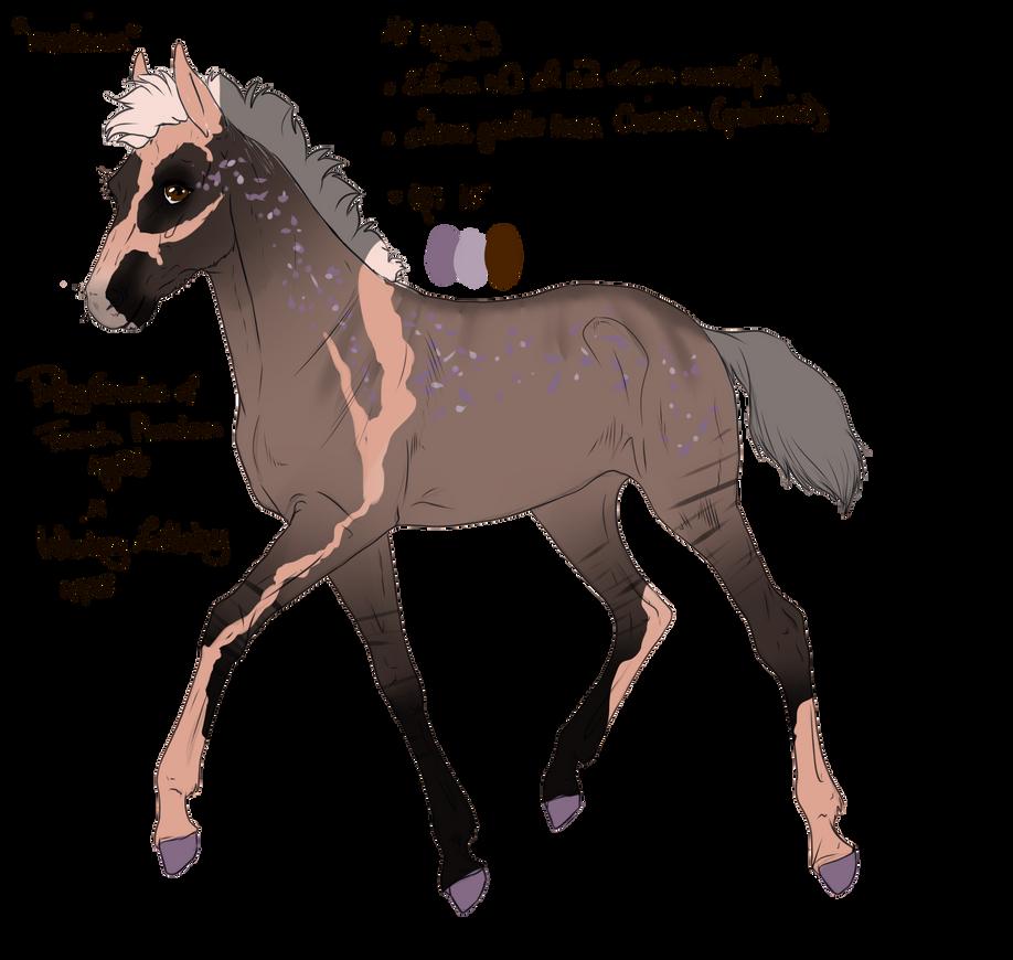 ID:4999 Foal Design by sandym918
