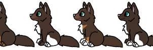 sweet mocha X Garret puppies -OPEN-