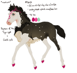 8076 Padro Foal Design by Kandy918